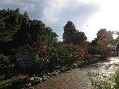 Duitsland Hamburg Botanische tuin6
