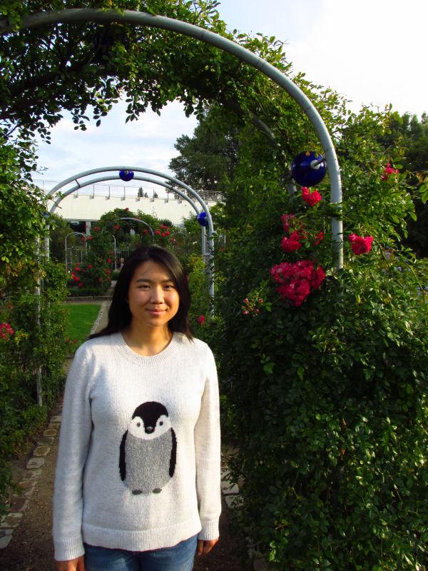 rose garden (1)