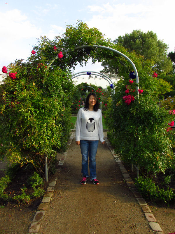 rose garden (6)