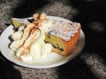 In Nimbin at ik dit heerlijk stuk taart zo zacht als angelcake. Blauwe bosbessen en amandelen, geweldige smaakteam!