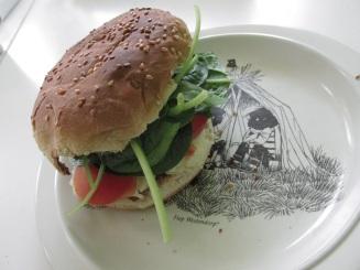 Hamburger, tomaat, spinazie en aardappelsalade (5)