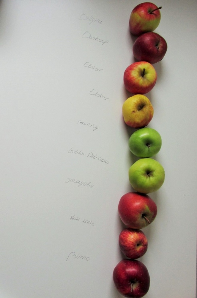 Appel smaaktest (2)