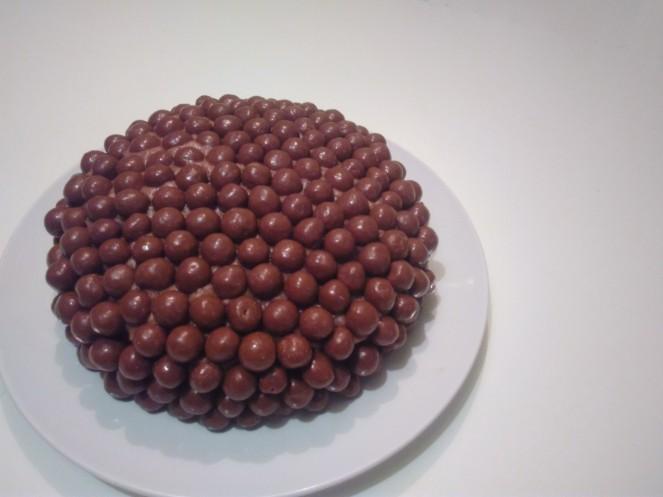 Maltezer Chocolate Cake (2)