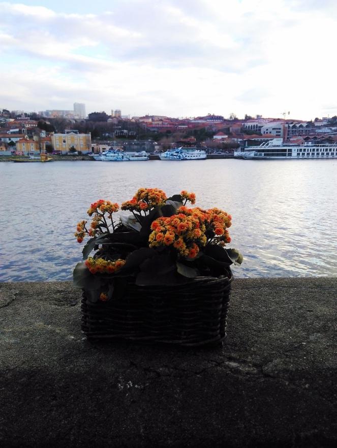 Portugal Porto (21)