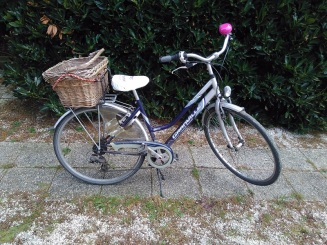 DIY Pimp your bike with flowers (2)