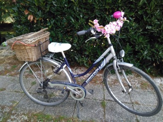 DIY Pimp your bike with flowers (4)