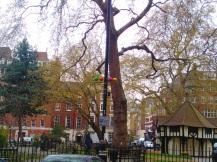 London Soho square