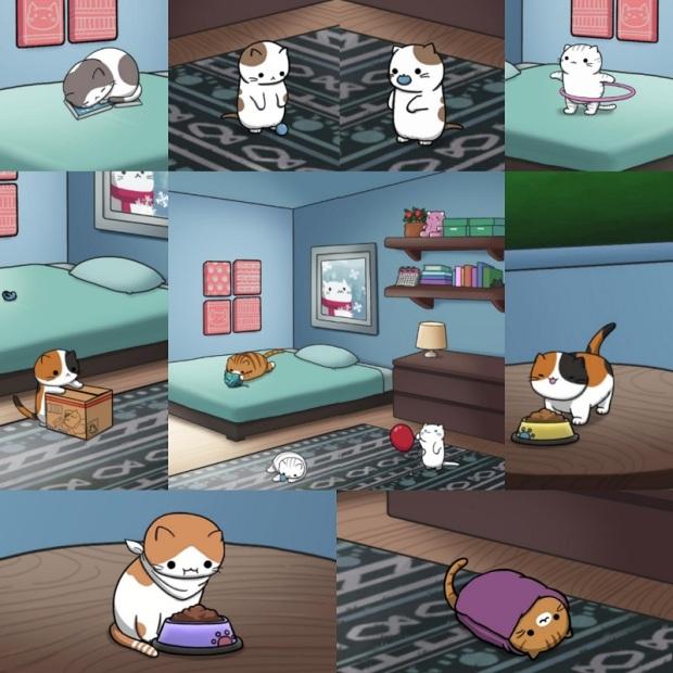 Cat app catchu.jpg